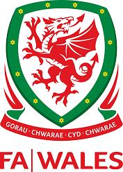 The FA Wales' dragon crest - Gorau Cwarae Cyd Chwarae